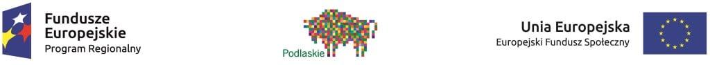 Zestaw_logotypow_kolorowych_EFS