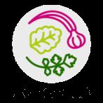 AGROPLUS – rozpoczęcie realizacji nowego projektu w ramach Erasmus+